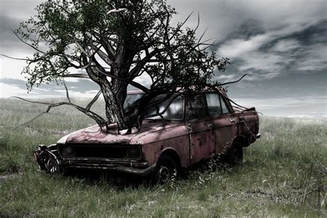 car with tree image tree car by check0 on deviantart