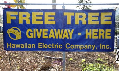 Free Tree Giveaway - arbor day free tree giveaway and plant sale at urban garden center in pearl city 11