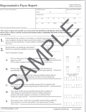 representative payee report fill online, printable