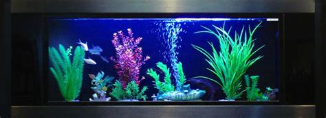 aquavista panoramic wall aquarium fish tank aquariums at aquavista 500 wall mounted fish tank aquariums free