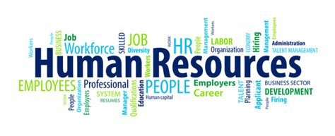 Sample Human Resources Resumes