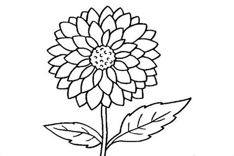 cool coloring pages of flowers 98 coloring pages cool cool coloring pages special