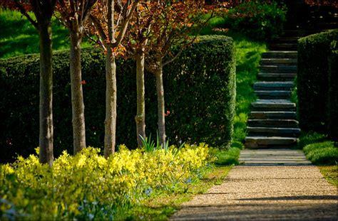 Landscape Architecture Carolina Landscape Architecture South Carolina Photographer