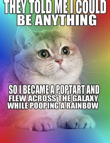 Rainbow Cat Meme - they told me i could be anything cat macros