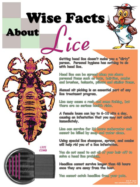 Wise Facts About Lice Poster