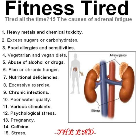 sleepy all the time fitness tired tired all the time 15 the causes of