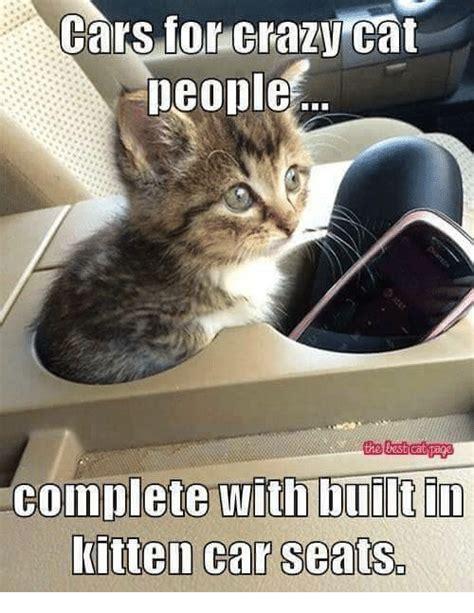 Crazy Cat Meme - 25 best memes about crazy cats crazy cats memes