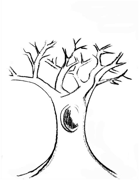 coloring page tree trunk tree branches printable coloring pages