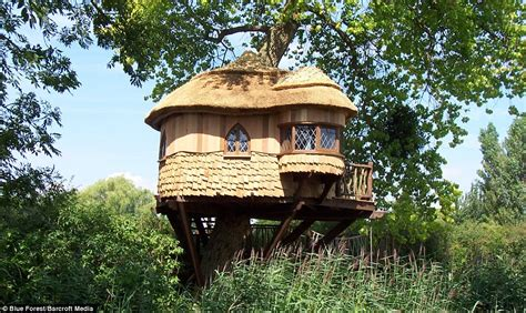 real treehouse now that s a real millionaire play pad the luxury tree