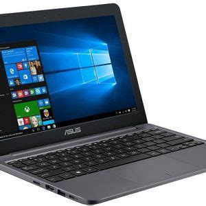 dell inspiron 11 3000 3185 / i3185 small & affordable 2 in