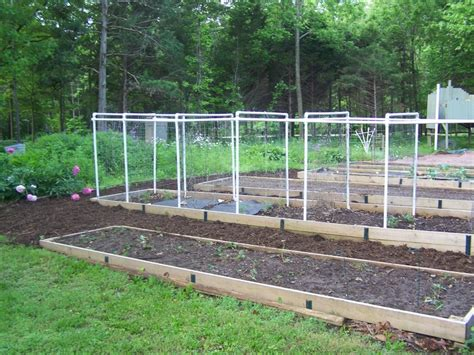 trellis system trellis system gardening