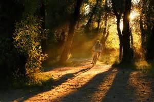 Golden hour 1 jpg
