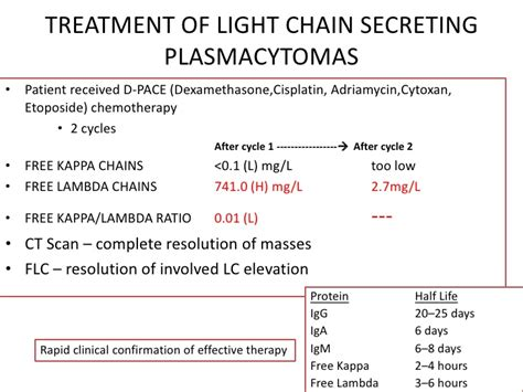kappa and lambda light chains serum free light chains