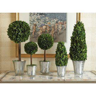 faux plants trees birch lane   topiary decor