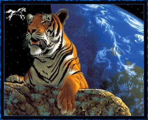 Картинки тиграми 2010