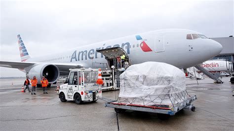 american airlines cargo u s pet discount expanded to include international flights