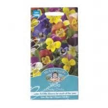 Benih Terong Viola jual benih terong yumi f1 400 biji harga murah panah merah