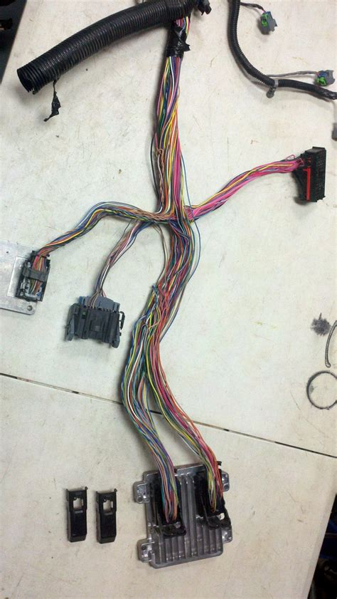identify connectors  truck harness lstech camaro