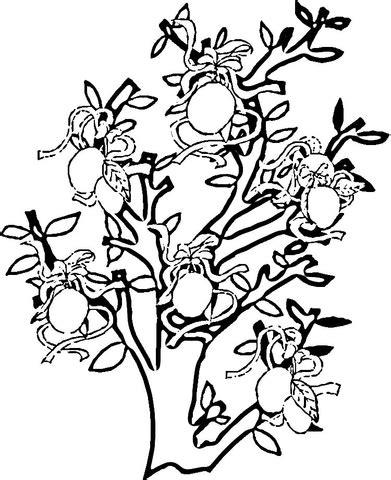 kolorowanka drzewko cytrynowe | kolorowanki dla dzieci do