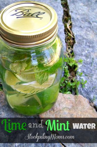 Lime And Mint Detox by Lime And Mint Water
