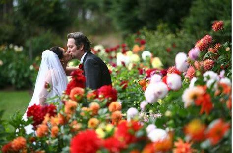 weddings in ukiah ca 17 best images about mendocino county weddings on