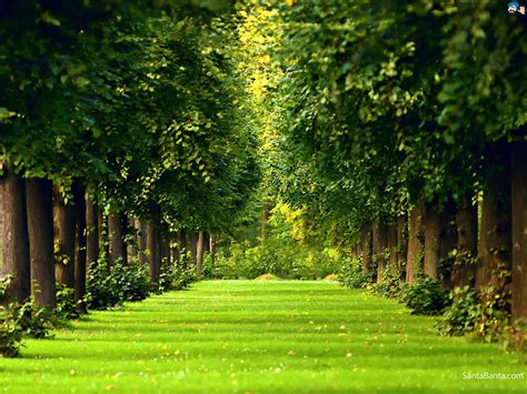 landscaping pics landscapes wallpaper 268