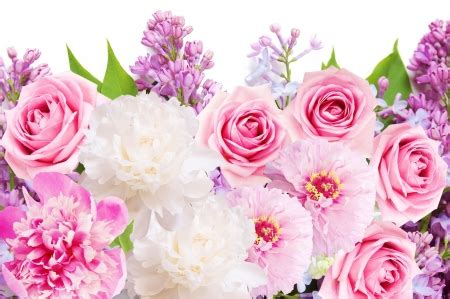 wallpaper flower mix flower mix flowers nature background wallpapers on