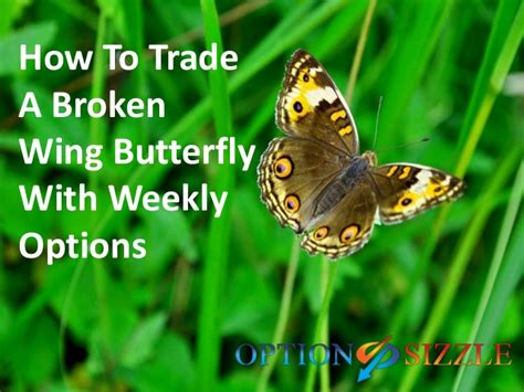 A Broken Wing how to trade a broken wing butterfly with weekly options