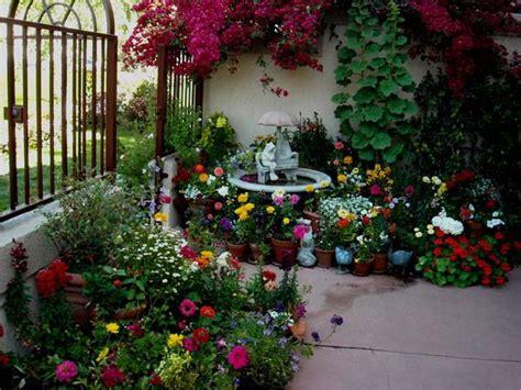 patio gardening   beginners guide  patio gardens