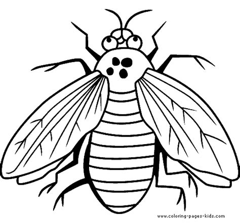 Fly Printable Coloring Pages Fly Coloring Page