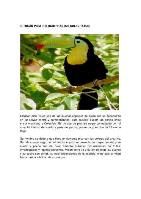 es un gnero con alrededor de 110 especies de la familia de las aves hermosas