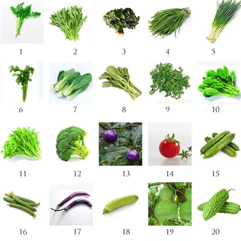 Heirloom Garden Vegetable Seed Non Gmo Seeds Bank Survival Garden Vegetable Seeds