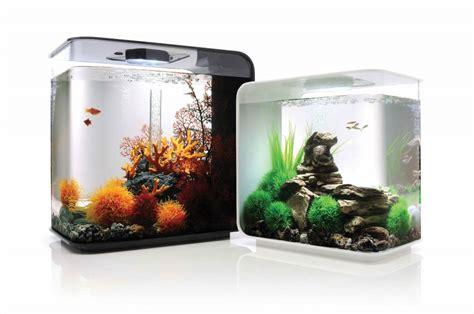 aquarium design sans entretien petit aquarium design pas cher 28 images aquarium 30l