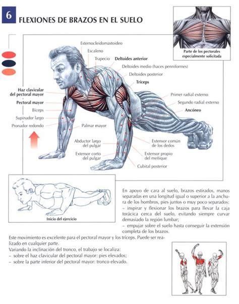 sacar las 100 flexiones rutinasentrenamiento c 243 mo hacer 100 flexiones mas fuerte que el hierro