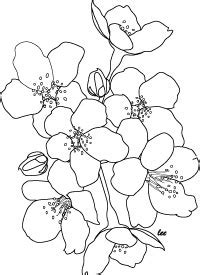coloring pages japanese flowers challenging design coloring posters for crafts