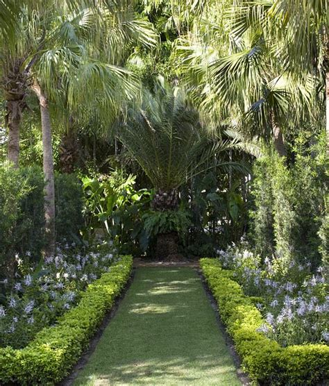 Palm Gardens by 25 Best Ideas About Tropical Garden Design On Tropical Garden Tropical Gardens And