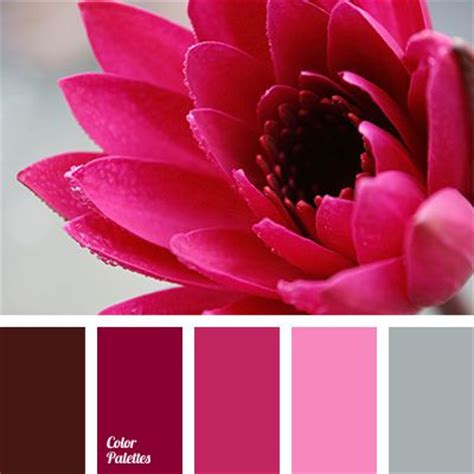 colors that match pink bright pink burgundy color cherry color color matching