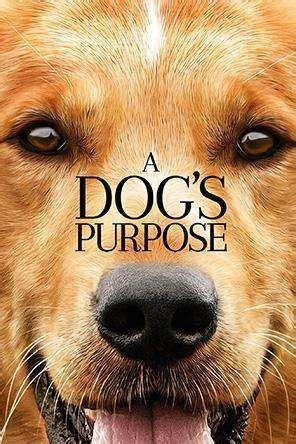 dogs purpose  rent   releases  dvd