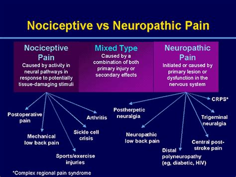 this is she vs this is her pain in the english managing neuropathic pain new approaches for today s