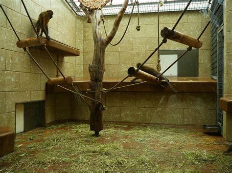 Zoologischer Garten In Wuppertal by Zoologischer Garten Wuppertal