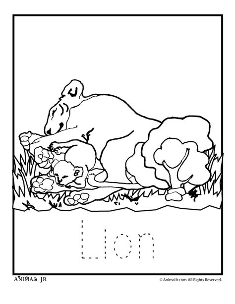 zoo babies free colouring pages