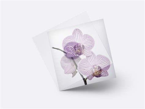 hochzeitseinladung orchidee hochzeitseinladung hinrei 223 ende orchideen