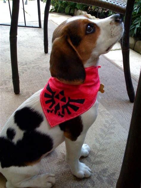 zelda dog hyrulian seal bandana sprite stitch