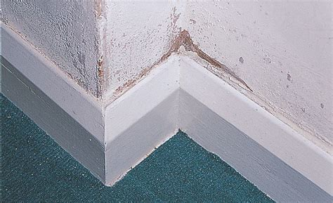 how to stop condensation on bathroom walls how to identify repair protect against d at home