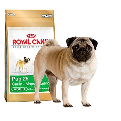 royal canin pug food reviews royal canin pug complete food 1 5kg mozzie