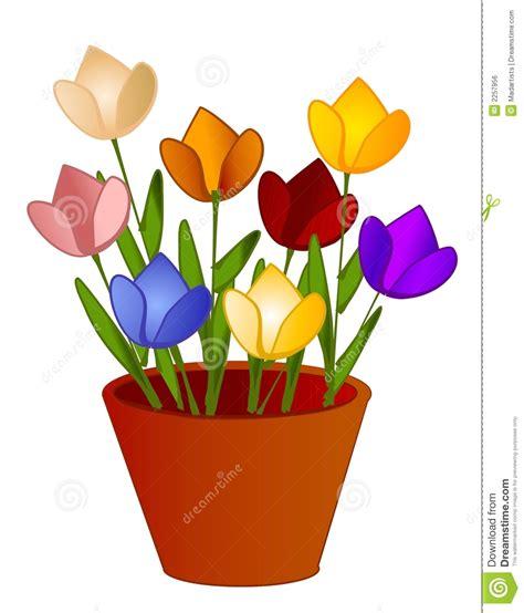 La Tulipe Gliter 1 Gr flores aisladas de los tulipanes en crisol imagen de