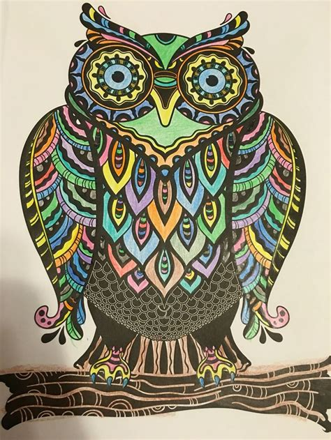 Colorama Coloring Book Owl 17 best images about color time on coloring