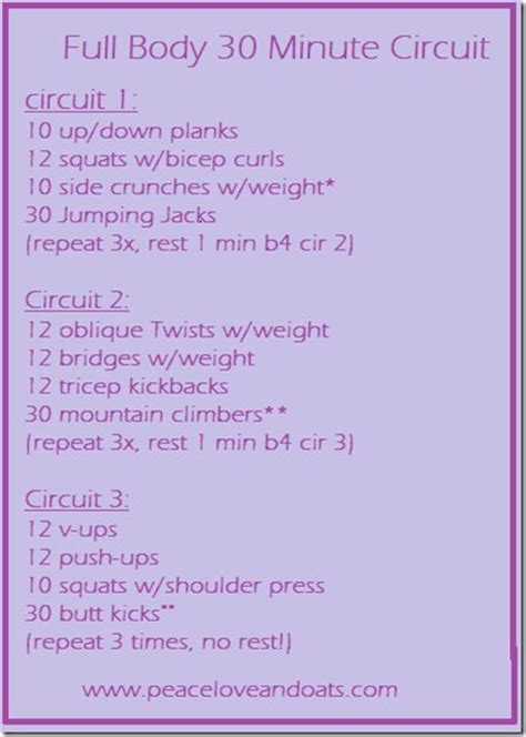 30 minute circuit exercise