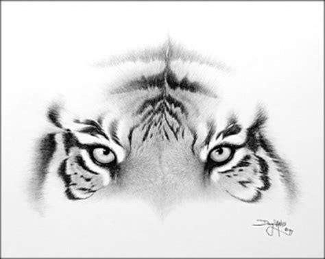 imagenes tumblr de tigres imagenes de tigres a lapiz imagui