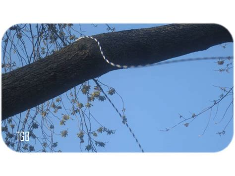 tire swing knot thegoozbeezclick 13 fun easy steps on hanging a vertical